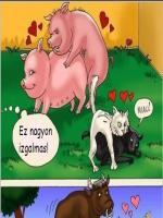 A farmon - 6. oldal