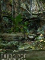 Lara Croft - A kincs őrzője