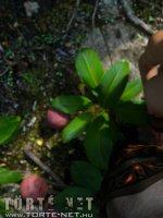 Lara Croft - A kincs őrzője - 45. oldal